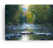 Very early morning at Bright in Victoria Canvas Print