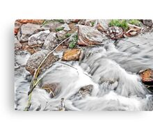 HDR River Canvas Print