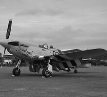 P-51 Mustang 'Ferocious Frankie' @ IWM Duxford by PathfinderMedia