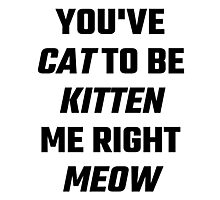 You've Cat To Be Kitten Me Right Meow Photographic Print