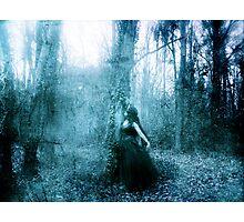 Image of Enchantment Photographic Print