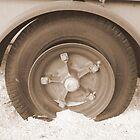 Trailer Tire Ocotillo by Namaste