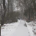 lets take a stroll by wildgurlphotos
