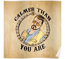 Calmer Than You Are. Poster