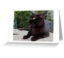 Black Cat Blues Greeting Card