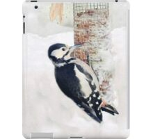 Winter woodpecker iPad Case/Skin
