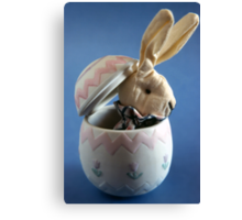 Bunny in Egg Canvas Print