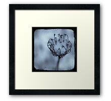 Snowcups Framed Print