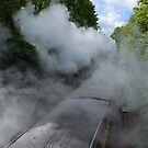 Steam and speed by Peller