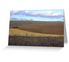 Colors of a Winter Field Greeting Card