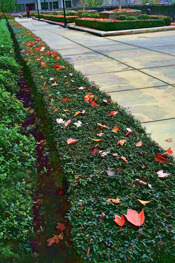 Autumn Walk In The Concrete Jungle by TeresaB