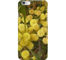 Acacia in Bloom iPhone Case/Skin