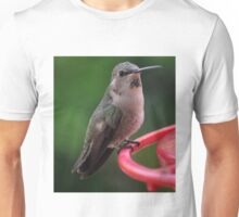HUMMINGBIRD ANNA'S SITTING ON FEEDER PERCH Unisex T-Shirt