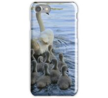 Mother Swan And Cygnets iPhone Case/Skin
