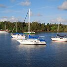 Five yachts by Graham Mewburn