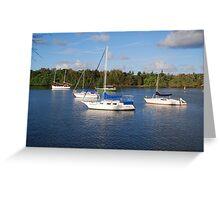 Five yachts Greeting Card