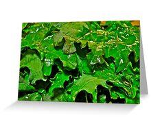 Kale for Dinner Greeting Card