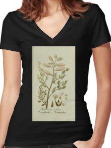 Plantarum Indigenarum et Exoticarum - Lukas Hochenleitter und Kompagnie 1788 - 042 Women's Fitted V-Neck T-Shirt