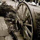 Old wheel,Sassafras,Victoria by Max R Daely