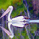 Pelican Path. by Lynda Kerr