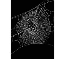 A Criminal Web Photographic Print
