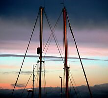 Masts by Stephen Maxwell