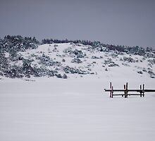 Lonely Jetty by Johan Hagelin