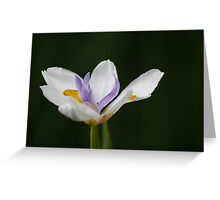 """A Fortnight in Taronga. (""""Fortnight Iris"""" for challenge) Greeting Card"""