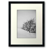Tree in slope Framed Print