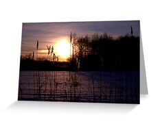 Dawn Through the Reeds Greeting Card