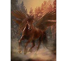 Pegasus brown Photographic Print