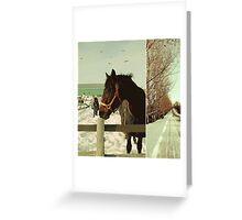 Winter Horses II Greeting Card