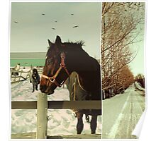 Winter Horses II Poster