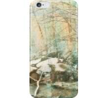 Winter's Kiss iPhone Case/Skin