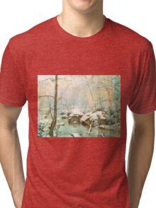 Winter's Kiss Tri-blend T-Shirt