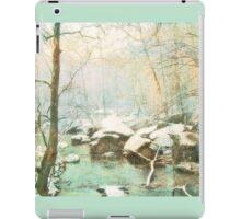 Winter's Kiss iPad Case/Skin