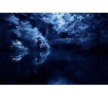 Midnight Dream Photographic Print