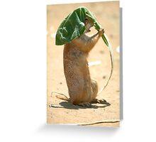 Prairie Dog 1 Greeting Card