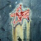 star of bethlehem by Lynne Prestebak