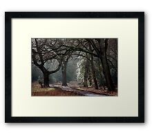 Entry to Mystery Framed Print