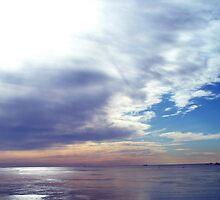 Chesapeake Ice by Timothy Eric Hites