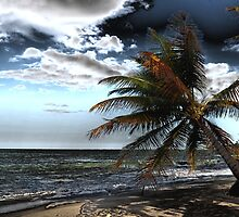 Puerto Rico Beach 3 by Steve Keefer