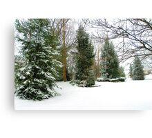 First Snowfall of Season! Canvas Print