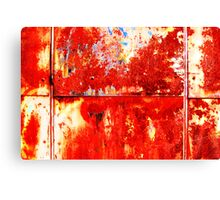 Plane red rust Canvas Print