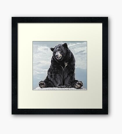 Lions & Tigers & Bears, Oh My! Framed Print