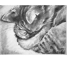 ROCKY! SLEEPY KiTTAH! Photographic Print