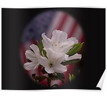 American Beauty  American Flag with White Azalea Flowers Poster