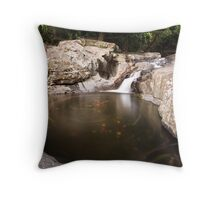 The Whirlpool above the Falls Throw Pillow