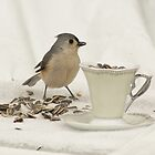 Bird with Cup o' Seeds by Margie Avellino