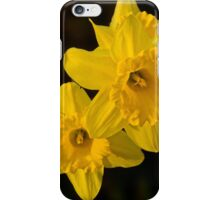 Daffodil Duo iPhone Case/Skin